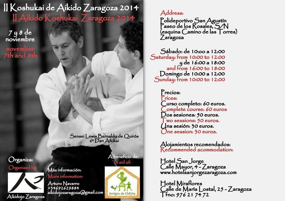 II Koshukai de Aikido solidario en Zaragoza