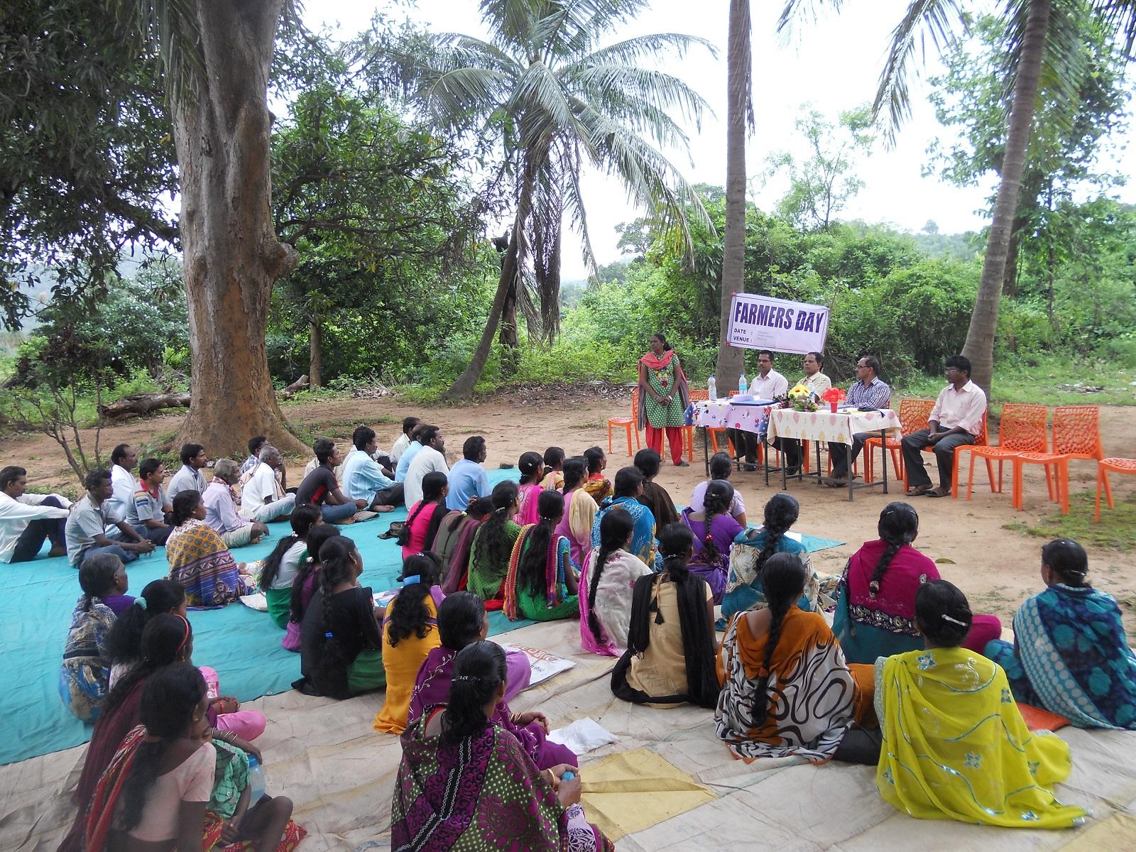 Noticias sobre el proyecto lechero en Kandhamal