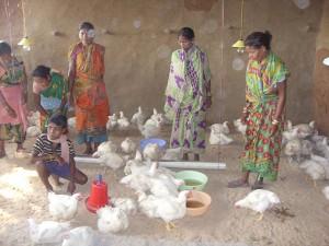 """Proyecto de """"microcréditos"""" en la zona tribal"""